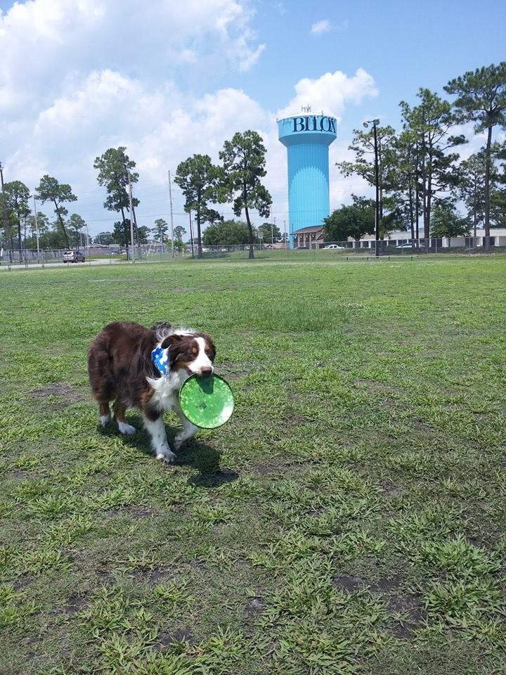 Popps Ferry Dog Park Biloxi Ms